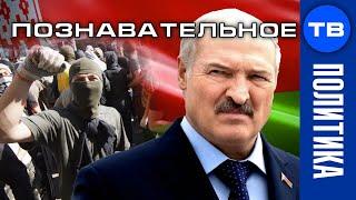 Белорусский трон. 33 богатыря против пана Лукашенки. Зачем российских военных послали в Беларусь?