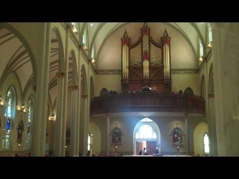 Gelineau Psalm 63 & Gospel Acclamation