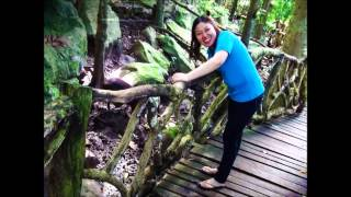 Mantianak Adventure Park - Sugbongcogon Misamis Oriental [HD]