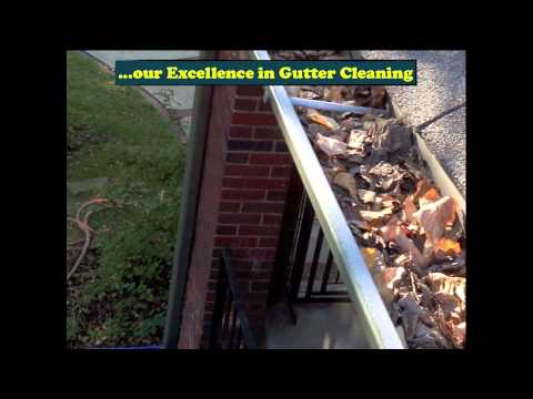 Gutter Cleaning Lees Summit MO Call (816) 545-9353