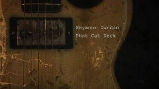 Seymour Duncan Phat Cat Neck