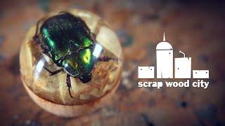 Green jewel scarab beetle in epoxy resin