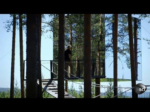 how to build an invisible tree house worlds strangest - Treehouse Masters Mirrors