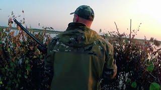 Осеняя охота на утку,с лодки.Hunting for a duck