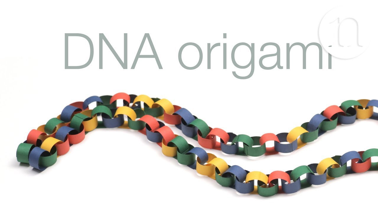 dna origami A team of engineering students has a cancer-fighting idea up its sleeve—and the sleeve is nanoscale the idea is based on a new cutting-edge research tool called dna origami in which scientists literally fold the molecules of life into two- and three-dimensional shapes the uc san diego team plans .