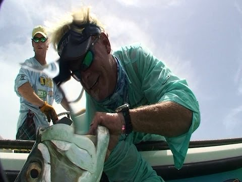 Monster Tarpon Fishing In Tampa Bay Florida With Live Bait