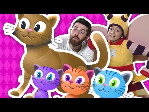 UN MOTAN CAT UN PISOI: Cantece educative pentru copii  Planeta Vesela - Cantece pentru copii in limba romana