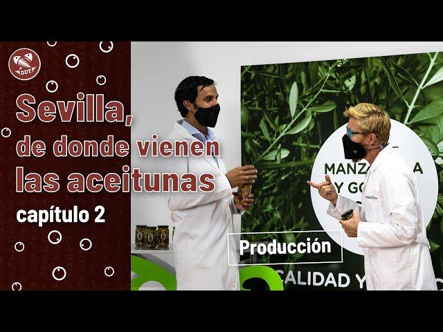 Sevilla, de donde vienen las aceitunas | Capítulo 2: Producción