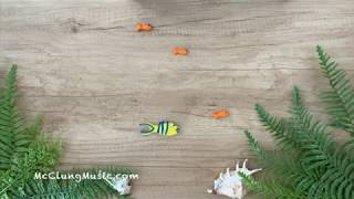 Pachelbel's Canon in D with Synchronized Fish (!) ♫ Claymation Lullaby
