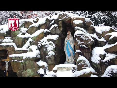 Advent at the Abbey