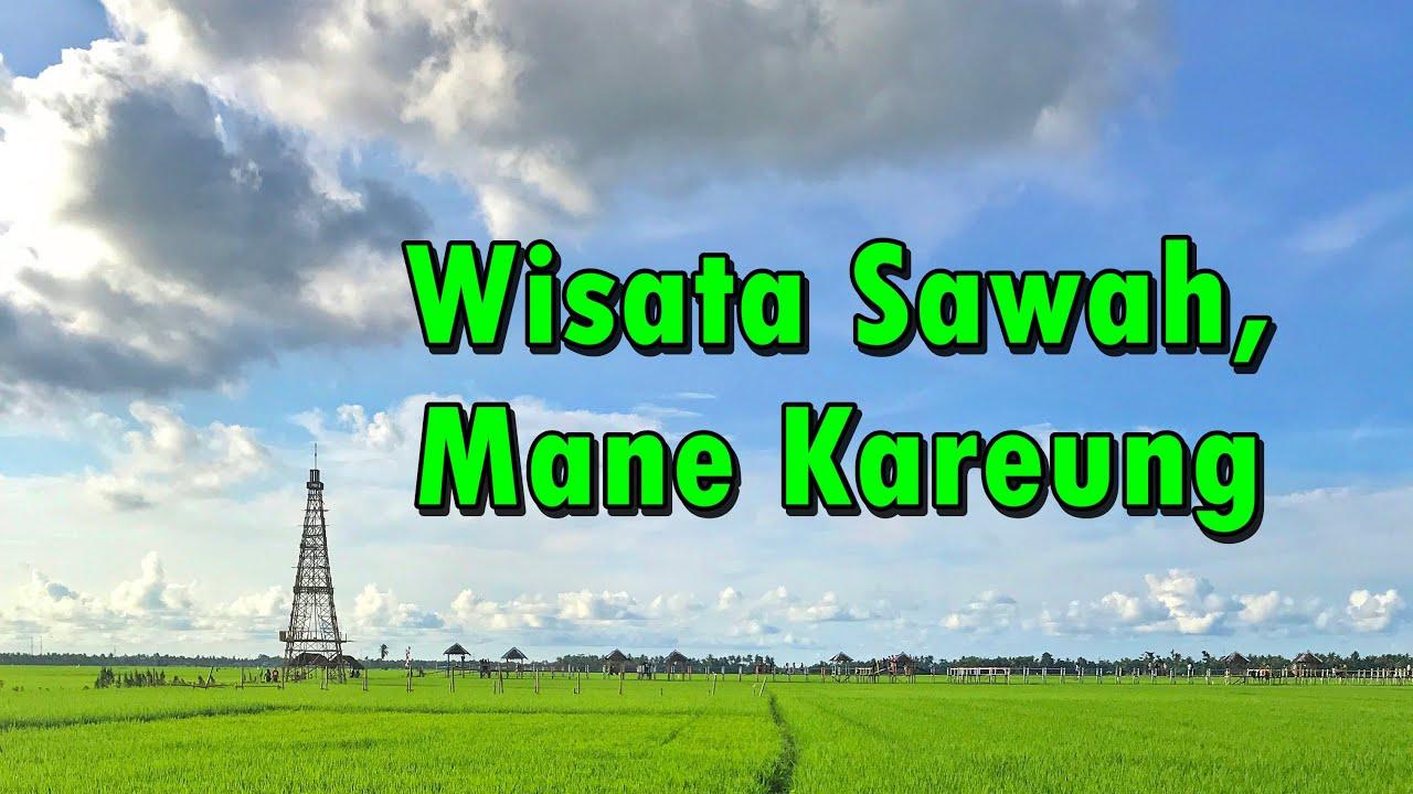 Destinasi Baru Wisata Sawah Mane Kareung Kota Lhokseumawe