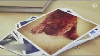 Compulsão por fotos pode prejudicar a memória | 15/09/2015