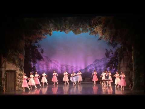 Жизель,Giselle,Русский Национальный Балет С.Радченко,Russian National Ballet,Moscow Festival Ballet.