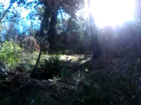 Big Sur Hike Video 2