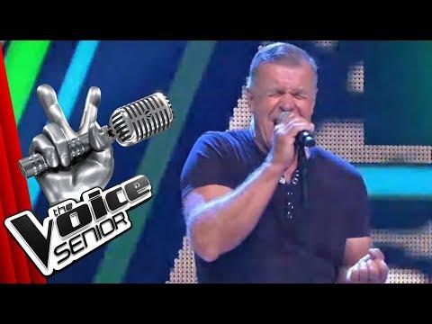 Die Ärzte - Junge (Steffen Martin) | The Voice Senior | Audition | SAT.1 TV
