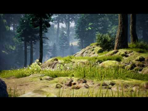 1 Hour Of Relaxing Wind & Forest Sounds - Ambient Atmosphere Meditation
