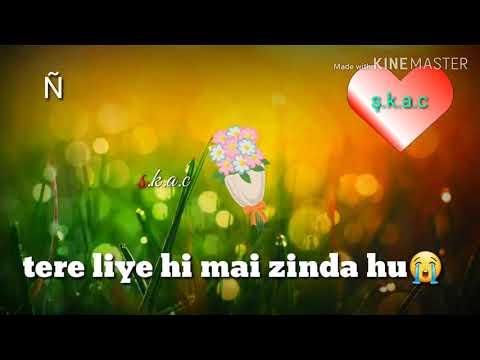 Tere Liye Hi Me Jinda Hu .........status