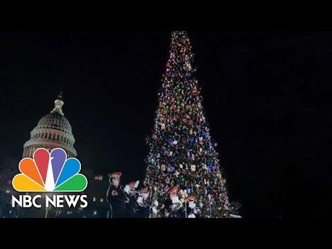 Pres. Trump Speaks At National Christmas Tree Lighting Ceremony   NBC News (Live Stream Recording)