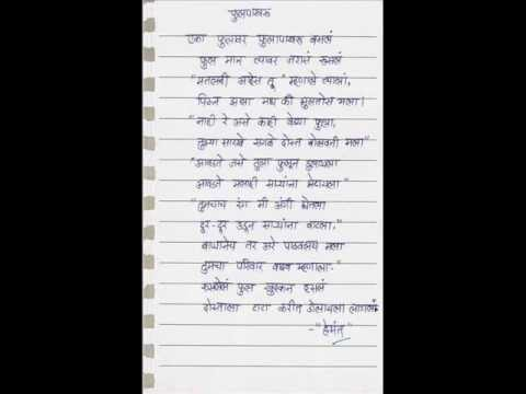 Essay on butterfly in marathi