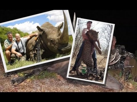 Dentist who killed Cecil the Lion has history of hunting outside the law