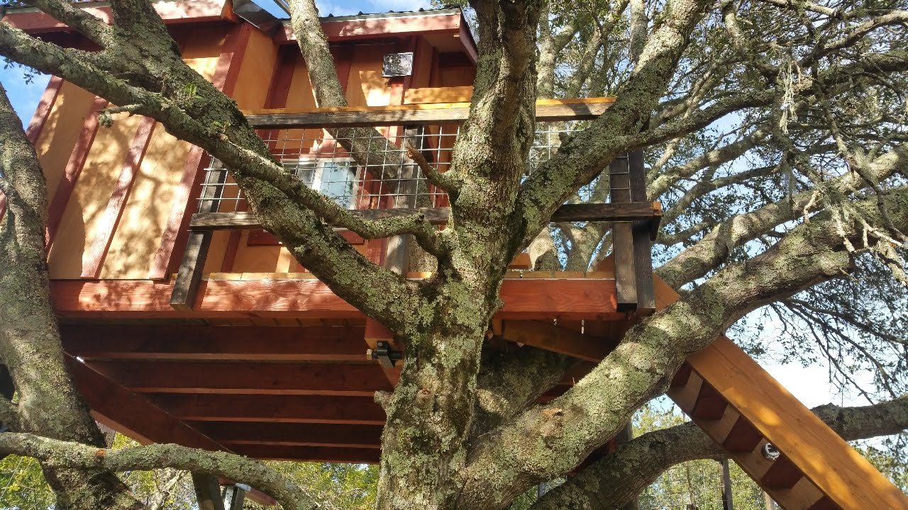 Backyard Treehouse For Kids   Kids Tree Houses For Sale.