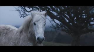 Deadboy - Caballero (Official Video)