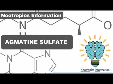 Agmatine Sulfate: Benefits, D, Side Effects - Nootropics