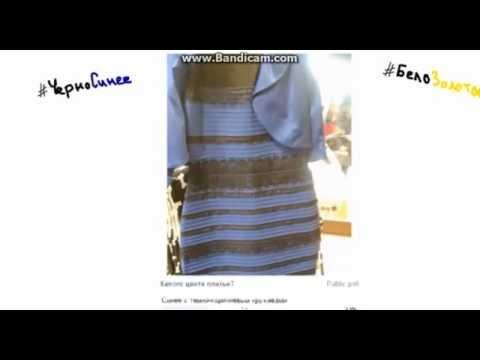 Черно-Синее или Бело-Золотое? (Вся правда о платье)