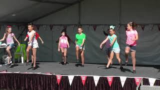 algester state school vibe dance 1