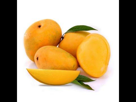 7 6 13 s b saadhani's experience in organic mango cultivation