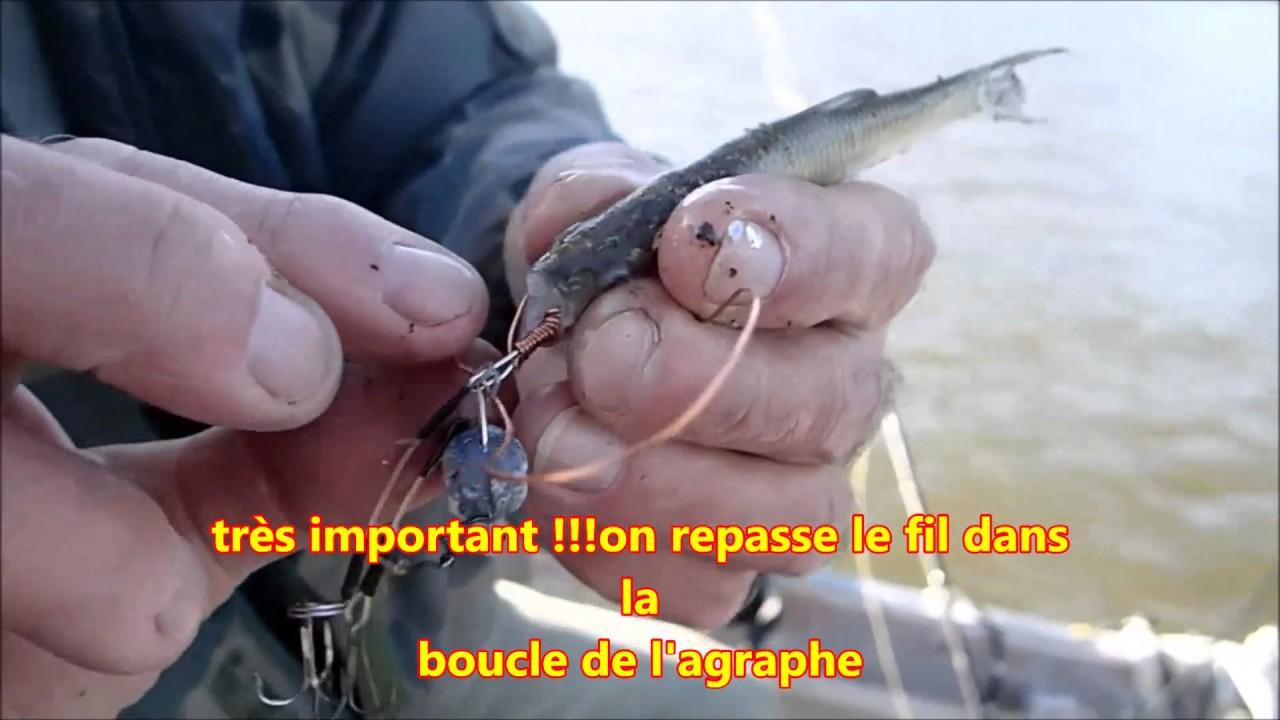 Pilou34 pr sente comment monter un poisson mort sur une monture mort mani youtube - Comment couper un palmier mort ...
