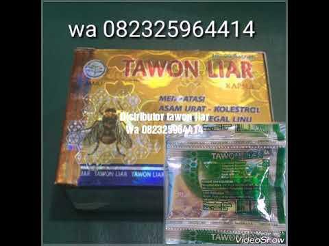kapsul-tawon-liar-asli-wa-082325964414