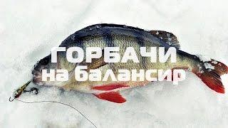видео Балансир для зимней рыбалки – Техника ловли на балансир