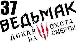 """прохождение Ведьмак 3: Дикая охота (сложность """"на смерть"""") [60 FPS] #37"""