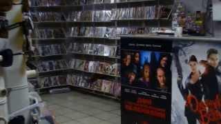 Ч.П. Настоящая лесная белка. В магазине дисков в городе Ачинске.!