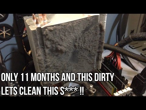 Let's Clean My Babe