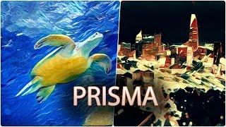 Camera.tinhte.vn - Hướng dẫn tạo ảnh sơn dầu nghệ thuật bằng ứng dụng Prisma