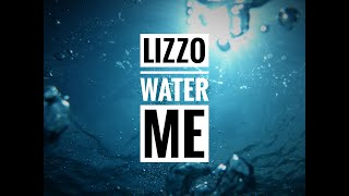 Lizzo - Water Me - I Am Free Walmart Song (Walmart Black Friday Song)