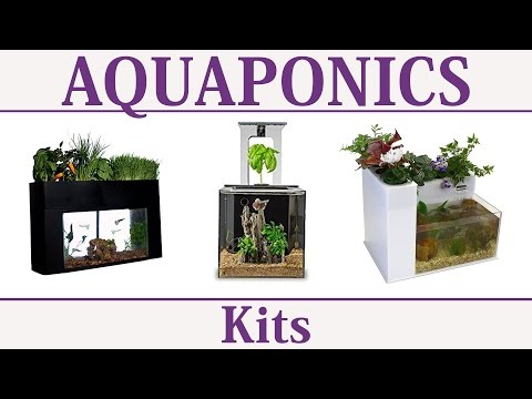 Aquaponics Systems & Kits