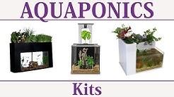 Aquaponics Systems & Kits