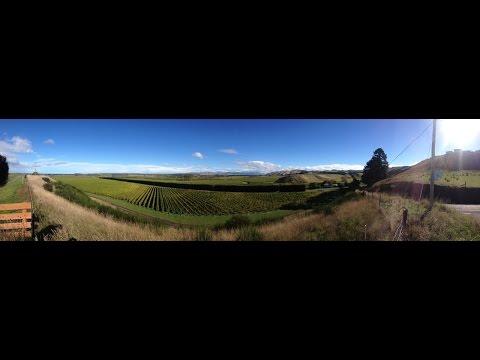 Cirro wines, Marlborough, New Zealand