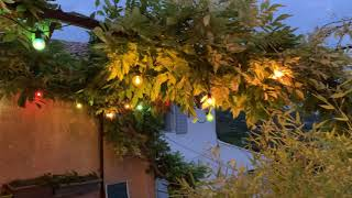 Guirlande Guinguette de Noël 6m ampoules multicolores 10 filament LED vidéo