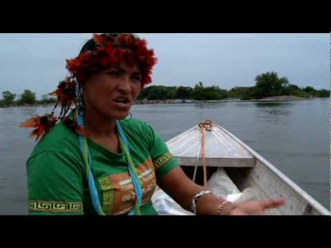 Struggle in the Amazon: The Clash between Energy and the Environment