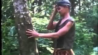 Angling Dharma 2 Part 6