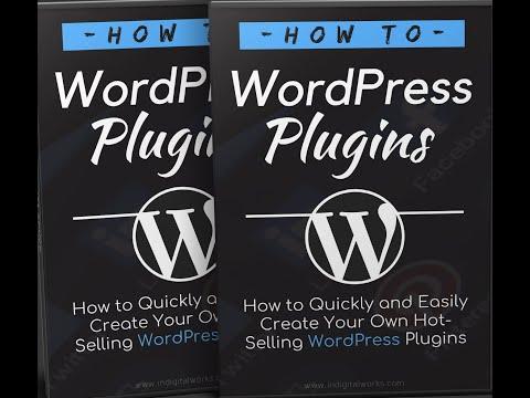 how-to-find-a-wordpress-plugin-developer-#8
