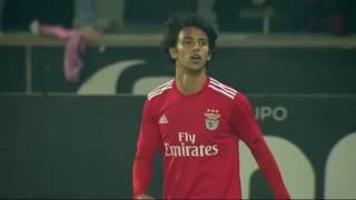 Goal   Golo João Felix: Vitória SC 0-(1) Benfica (Taça de Portugal 18/19 1/4 Final)