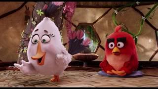 Курсы управления гневом (4/22)(Angry birds в кино, 2016)