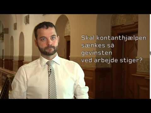 15 svar om Radikale Venstres politik - FV15