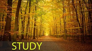 3 Hour Relaxing Study Music: Concentration Music, Homework Music, Alpha Waves, Brain Power ☯712