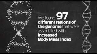 Is obesity in our genes? Study strengthens genetic link to body size